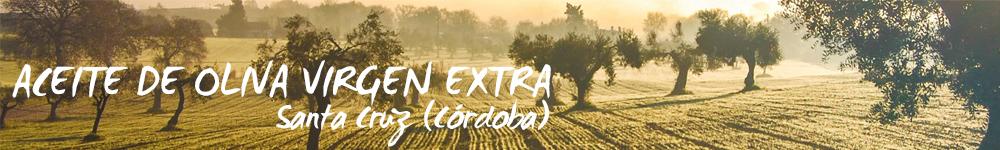 Comprar esencias de aceite de Oliva Virgen Extra Arbonaida